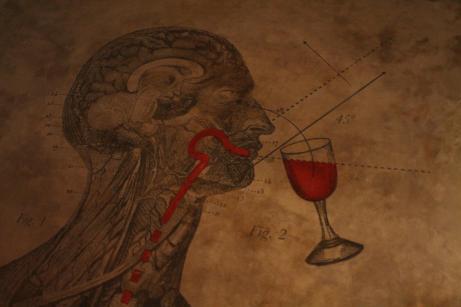 vino-cultura-gastronomia